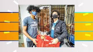 Alcaldía de Medellín entregó kits para la siembra de ecohuertas - Telemedellín