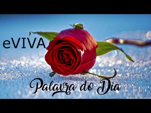 PALAVRA DE HOJE 03 DE MAIO eVIVA MENSAGEM MOTIVACIONAL PARA REFLEXÃO DE VIDA - BOM DIA!