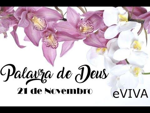 PALAVRA DE DEUS PARA HOJE 21 DE NOVEMBRO eVIVA MENSAGEM MOTIVACIONAL PARA REFLEXÃO DE VIDA
