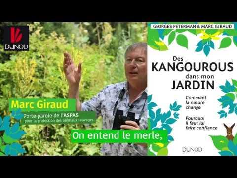 Vidéo de Marc Giraud