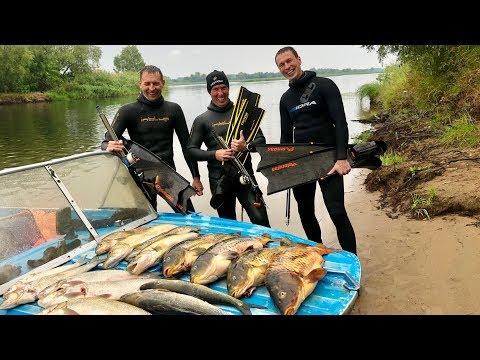 Подводная охота в Саратове. Видовое разнообразие Волги.
