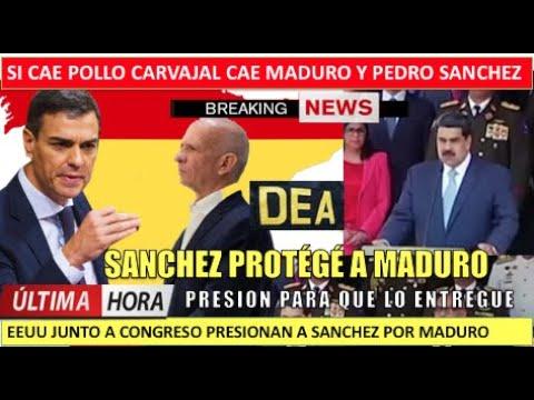 Si cae Maduro cae Sanchez gobierno espanol protege al Pollo Carvajal