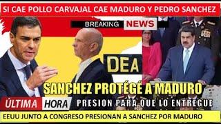 Si cae Maduro cae Sanchez gobierno espan?ol protege al Pollo Carvajal