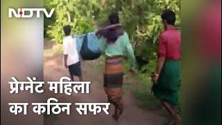 Watch: Madhya Pradesh में आठ किलोमीटर तक इस तरह से ले जाई गई गर्भवती महिला - NDTVINDIA