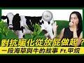 對抗暖化從放屁做起?一段海草與牛的故事Ft.甲烷|Greenvoice 綠之心EP16|綠色和平台灣
