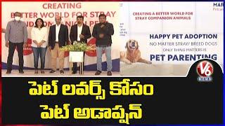 Pet Adoption Program For Pet Lovers In Hyderabad | V6 News - V6NEWSTELUGU