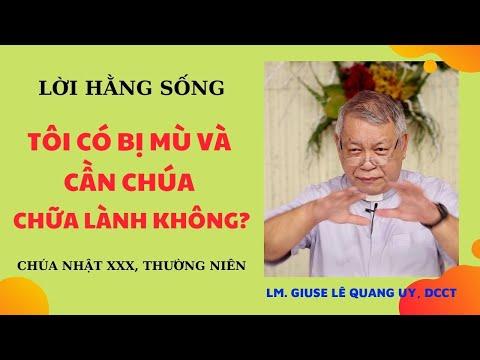 LHS Chúa Nhât XXX TN: TÔI CÓ BỊ MÙ VÀ CẦN CHÚA CHỮA LÀNH KHÔNG? - Linh mục Giuse Lê Quang Uy, DCCT