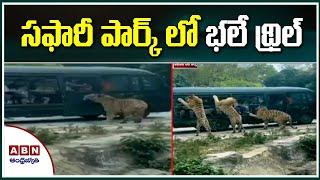 Viral Video : సఫారీ పార్క్ లో భలే థ్రిల్  | Best Adventures Video | Safari Park | ABN Telugu - ABNTELUGUTV