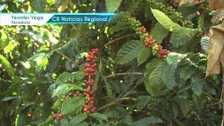 Costa Rica Noticias Regional - Jueves 13 Mayo 2021