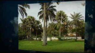 Natural Gambia
