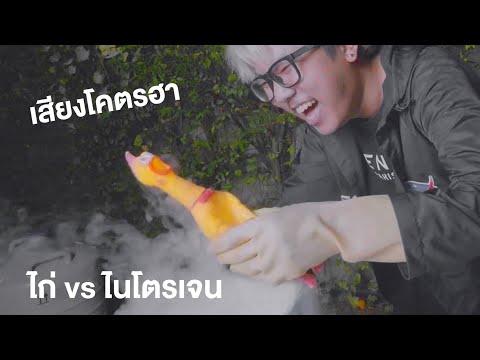 ไก่-VS-ไนโตรเจนเหลว