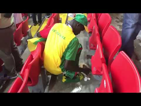 VIDEO: Senegal supporters tidy up stadium following victory over Poland