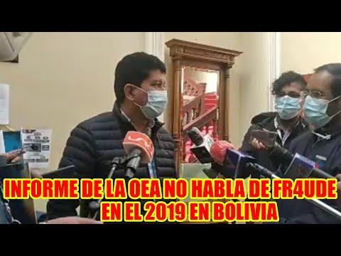 DIPUTADO MAS-IPSP. SEÑALA QUE EL INFORME LA OEA DEL 2019 EN NINGUNA PAGINA HACEN MENCIÓN DE FRAUDE..