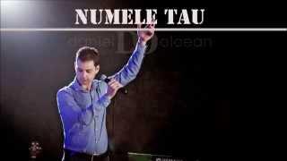 Numele Tau - Daniel Olcean