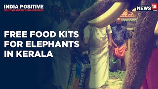 Kerala Govt Provides Free Food Kits To Captive Elephants | India Positive | CNN News18 - IBNLIVE