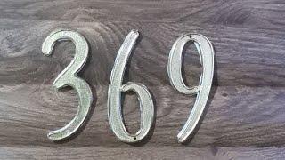 369 DE TESLA GATICO VIP#1. 10/08/2020