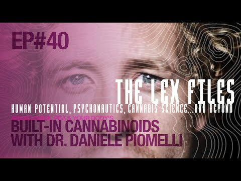Anandamide, PEA & Your Body's Built-In Cannabinoids with Dr. Daniele Piomelli | The Lex Files | Ep. 40