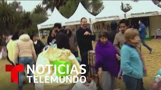 Mercado del trueque cambia basura por comida   Noticias Telemundo