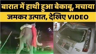 Prayagraj : बारात में हाथी हुआ बेकाबू, मचाया जमकर उत्पात, देखिए VIDEO - AAJKIKHABAR1